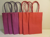 Gift Bags - Paper - Red & Purple Red Hat Ladies Party Supplies