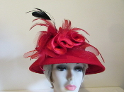 Daringly Different Red Hat - Red Hat Lady Colors